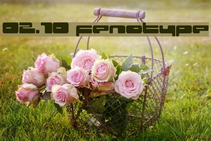 02.10 fenotype Fonte examples