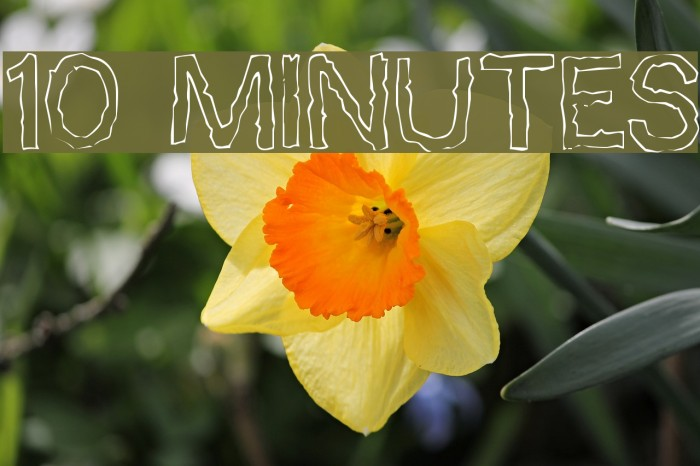 10 Minutes Fonte examples