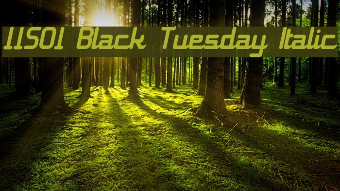 11S01 Black Tuesday Italic फ़ॉन्ट examples