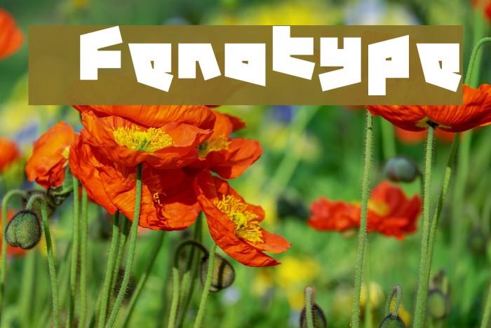 12.19 Fenotype Fonte examples
