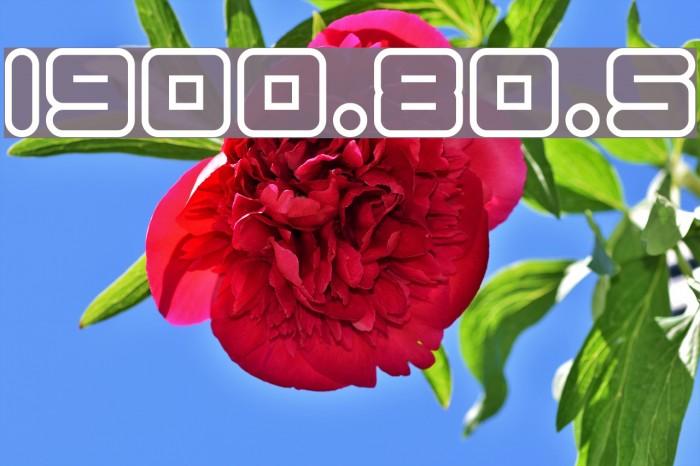 1900.80.5 字体 examples