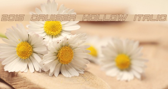 2015 Cruiser Hollow Italic फ़ॉन्ट examples