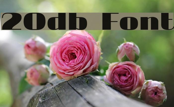 20db फ़ॉन्ट examples