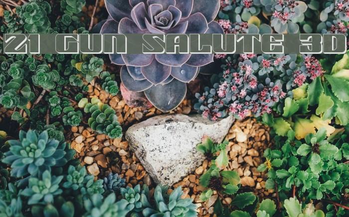 21 Gun Salute 3D Font examples