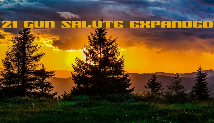 21 Gun Salute Expanded Шрифта examples