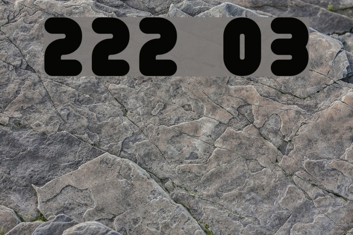 222 03 Font examples