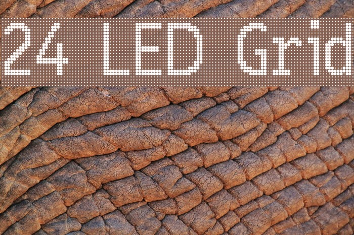 24 LED Grid Fonte examples