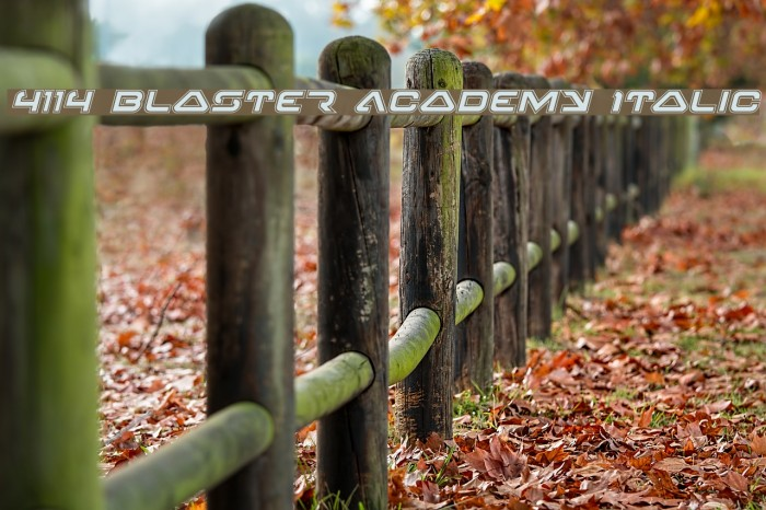 4114 Blaster Academy Italic Font examples