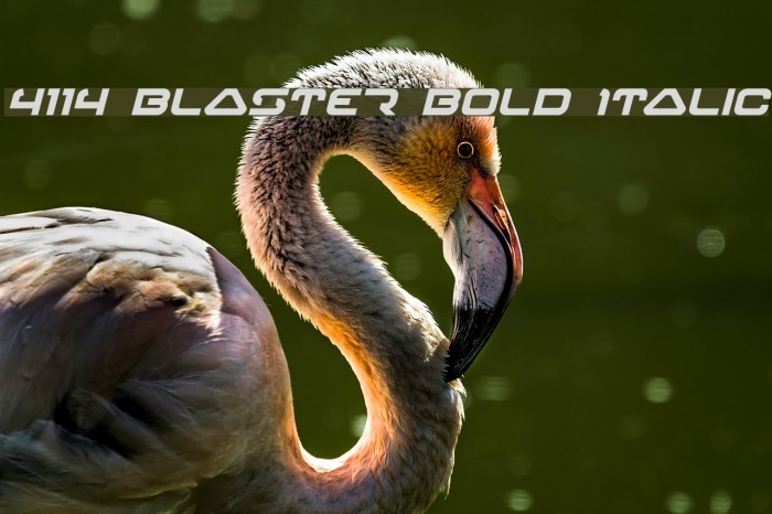 4114 Blaster Bold Italic Font examples