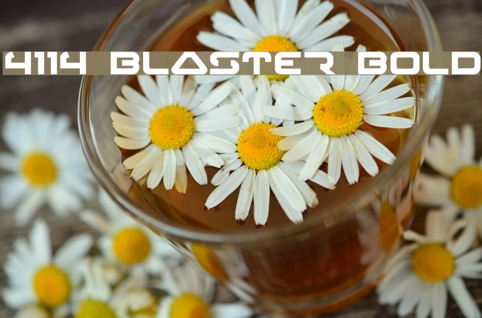 4114 Blaster Bold Font examples