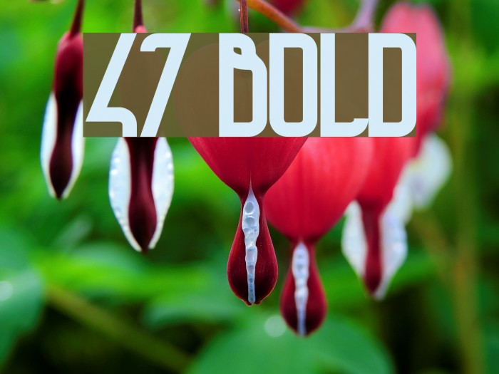 47 Bold Schriftart examples