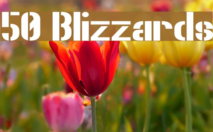 50 Blizzards Font examples