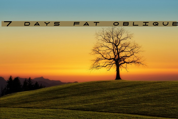 7 days fat oblique Font examples