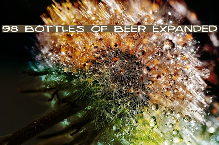 98 Bottles of Beer Expanded Fonte examples