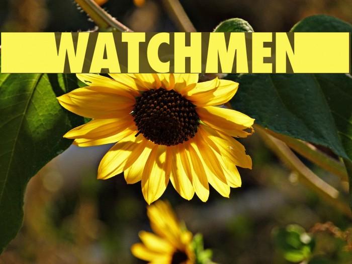 --wATCHMEn-- Fonte examples