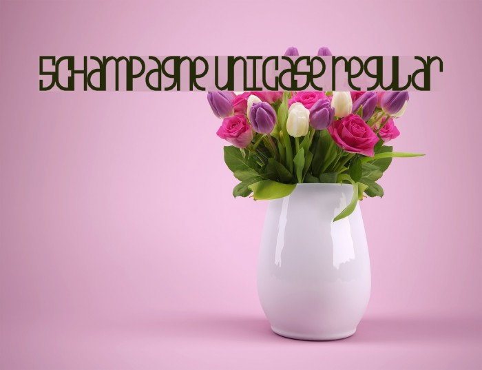 5Champagne Unicase Regular Fonte examples