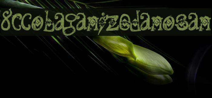 8C-DobaganizedRanosan Fonte examples