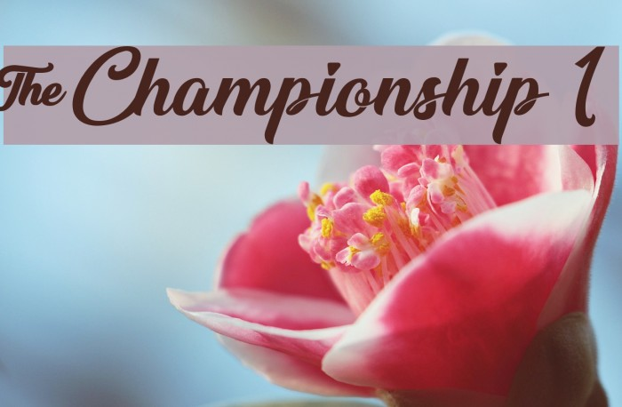 &Championship 1 フォント examples