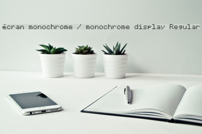 �cran monochrome / monochrome display Regular Font examples