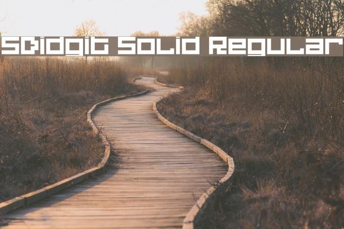 5Didgit Solid Regular Fonte examples