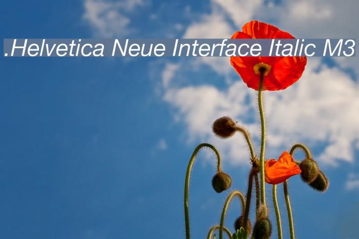 .Helvetica Neue Interface Italic M3 Fonte examples