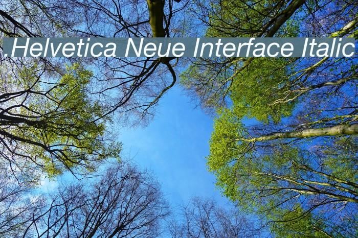 .Helvetica Neue Interface Italic Font examples