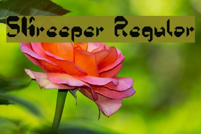 5Kreeper Regular Fonte examples