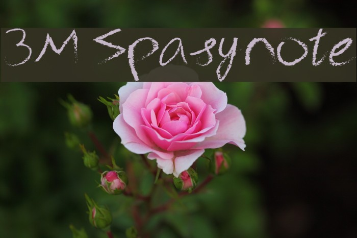 3M Spasynote फ़ॉन्ट examples