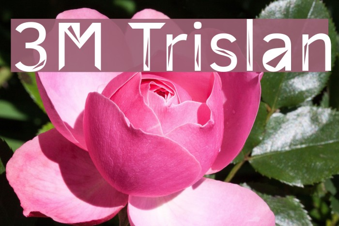 3M Trislan Font examples