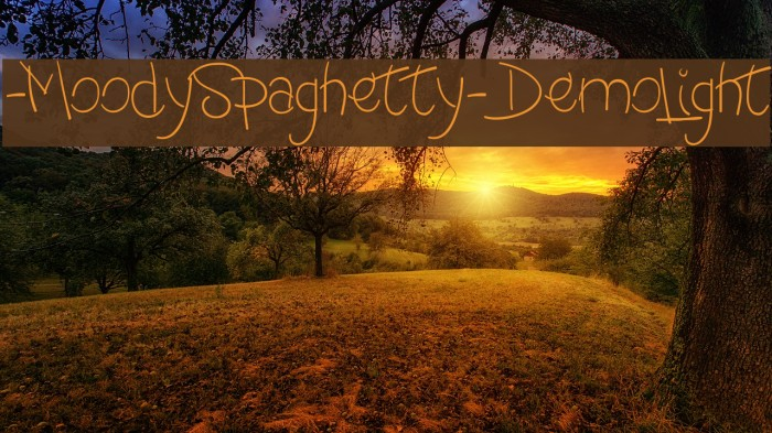 -MoodySpaghetty-DemoLight لخطوط تنزيل examples