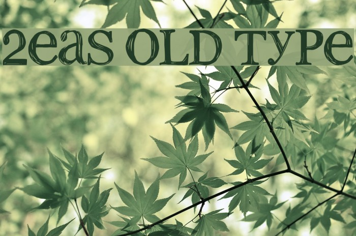 2Peas old type Font examples