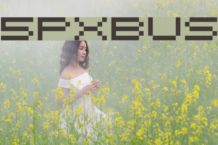 5pxbus Font examples