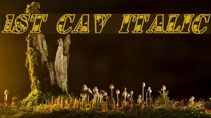 1st Cav Italic Fonte examples