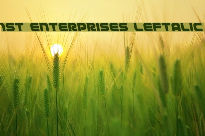 1st Enterprises Leftalic Fonte examples