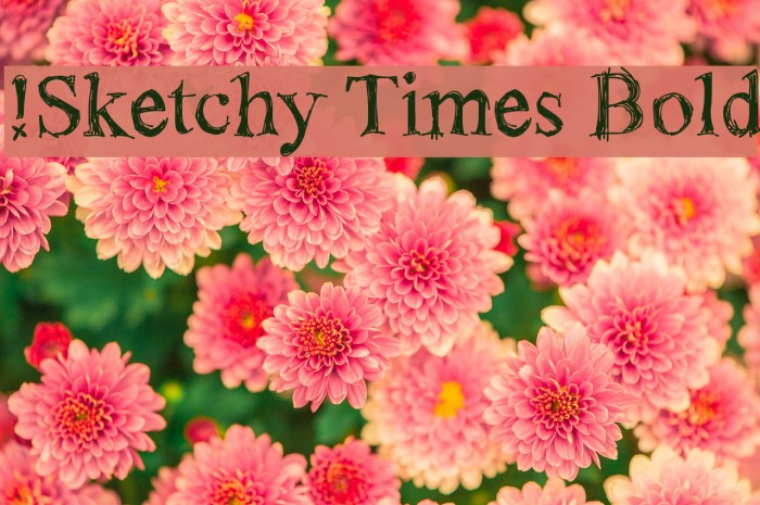 !Sketchy Times Bold फ़ॉन्ट examples