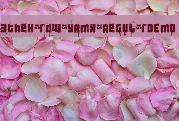 3theHardwayRMX-RegularDEMO Font examples