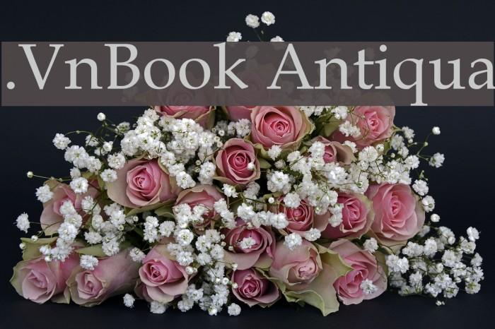 .VnBook Antiqua Font examples