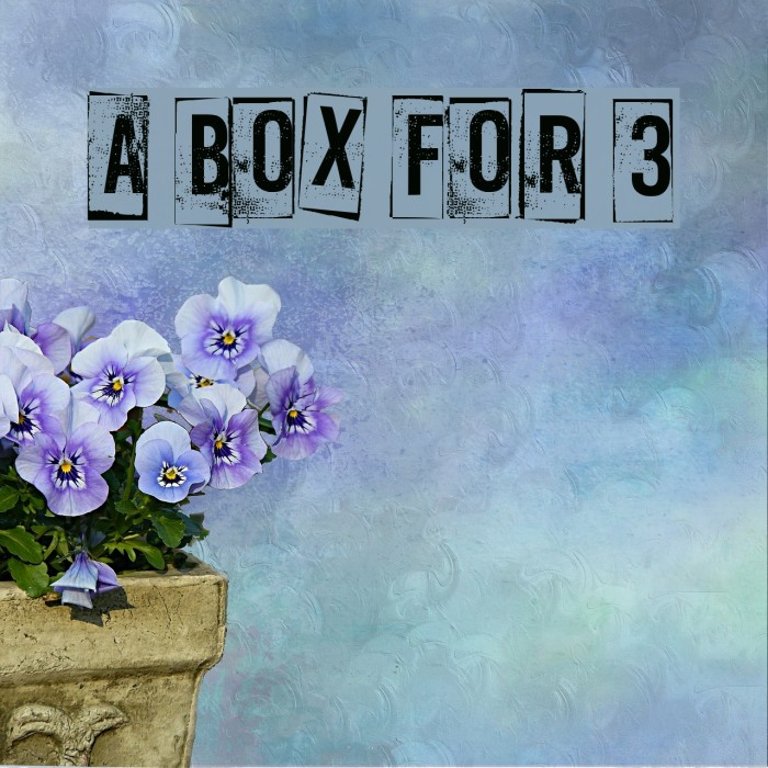 A Box For 3 フォント examples