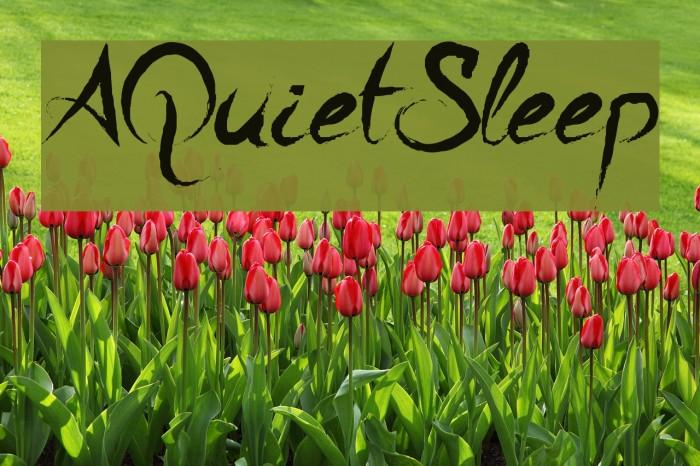 A Quiet Sleep Schriftart examples