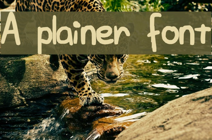 A plainer font Fonte examples