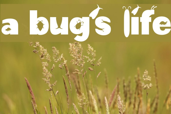 a bug's life Fonte examples