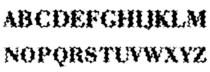 ABCTech Bodoni Cactus لخطوط تنزيل الأحرف الكبيرة