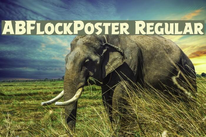 ABFlockPoster Regular Шрифта examples