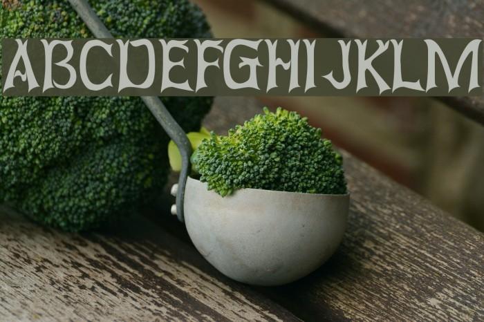 Abagail Regular Font examples
