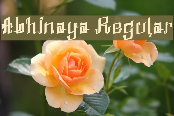 Abhinaya Regular Шрифта examples