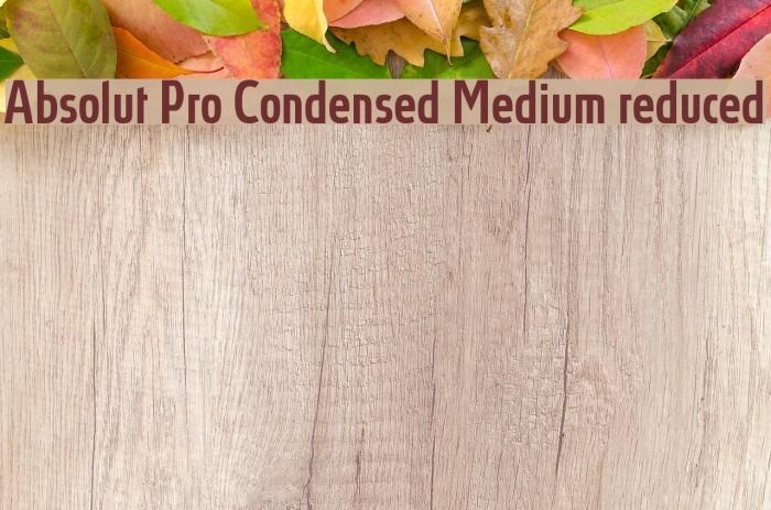 Absolut Pro Condensed Medium reduced Font examples