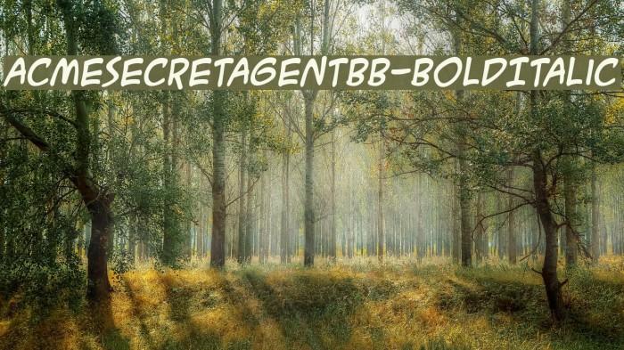 ACMESecretAgentBB-BoldItalic Fonte examples