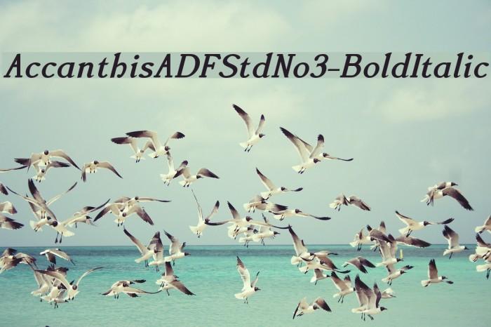 AccanthisADFStdNo3-BoldItalic Fonte examples