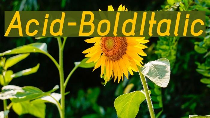 Acid-BoldItalic फ़ॉन्ट examples