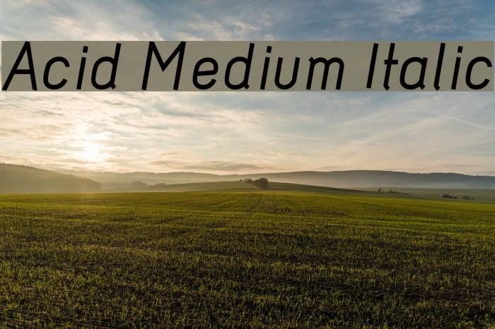 Acid Medium Italic Font examples